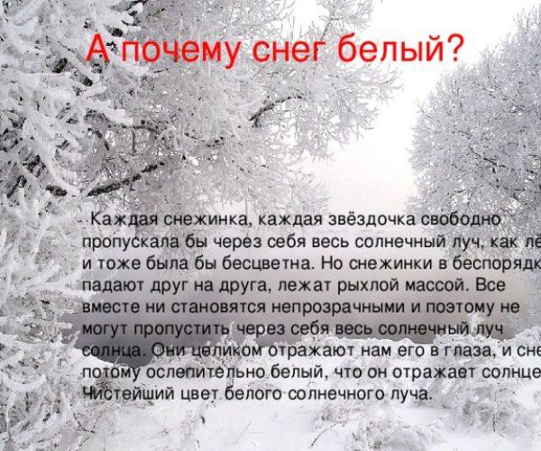 img_phptngTEi_Belaya-vata-plyvet-kuda-to_1_11