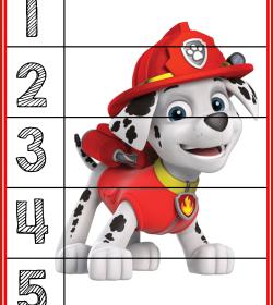 5_puzzle_marshall