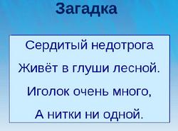 zagadka-pro-ezhika